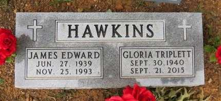 HAWKINS, GLORIA - Clark County, Arkansas | GLORIA HAWKINS - Arkansas Gravestone Photos