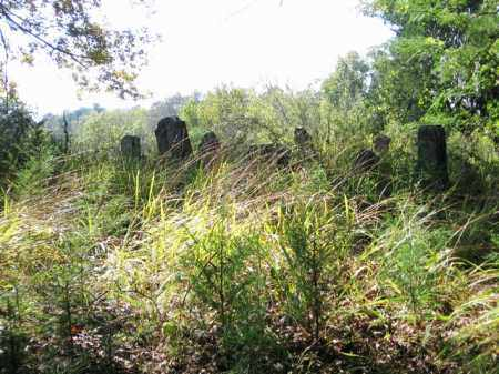 *LEE CEMETERY OVERVIEW,  - Clark County, Arkansas |  *LEE CEMETERY OVERVIEW - Arkansas Gravestone Photos