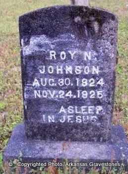 JOHNSON, ROY N - Clark County, Arkansas   ROY N JOHNSON - Arkansas Gravestone Photos