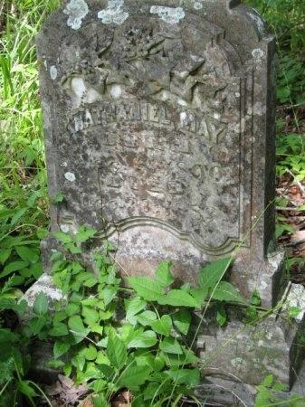 MAY, NATHANIEL CURTIS - Clark County, Arkansas | NATHANIEL CURTIS MAY - Arkansas Gravestone Photos