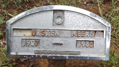 MEEKS, THURSTEN - Clark County, Arkansas | THURSTEN MEEKS - Arkansas Gravestone Photos