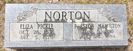 PICKLE NORTON, ELIZA - Clark County, Arkansas | ELIZA PICKLE NORTON - Arkansas Gravestone Photos