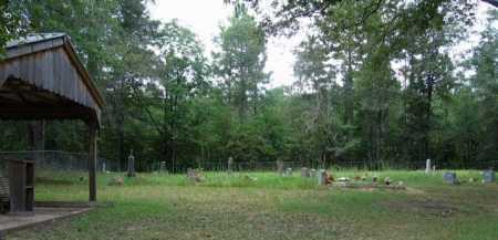 *DILLARD CEMETERY, OVERVIEW - Clark County, Arkansas   OVERVIEW *DILLARD CEMETERY - Arkansas Gravestone Photos