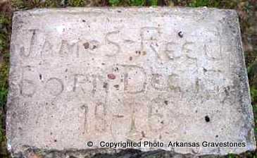 REED, JAMES - Clark County, Arkansas | JAMES REED - Arkansas Gravestone Photos