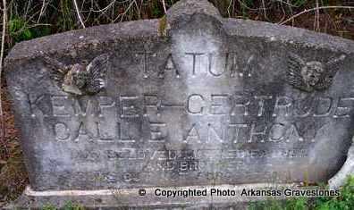 MITCHELL ANTHONY, CALLIE - Clark County, Arkansas | CALLIE MITCHELL ANTHONY - Arkansas Gravestone Photos