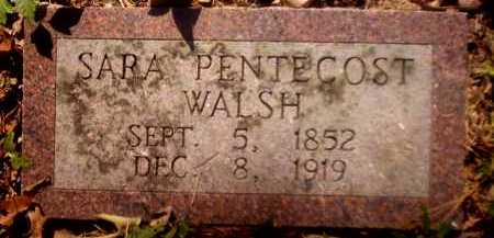 WALSH, SARA - Clark County, Arkansas | SARA WALSH - Arkansas Gravestone Photos