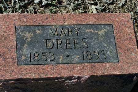 SELLMEYER DREES, MARY - Clay County, Arkansas   MARY SELLMEYER DREES - Arkansas Gravestone Photos