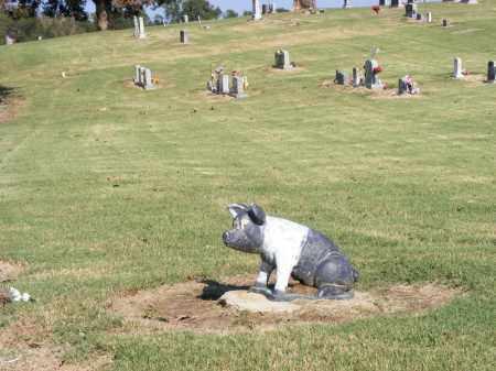 *HITT CEMETERY OVERVIEW,  - Clay County, Arkansas |  *HITT CEMETERY OVERVIEW - Arkansas Gravestone Photos