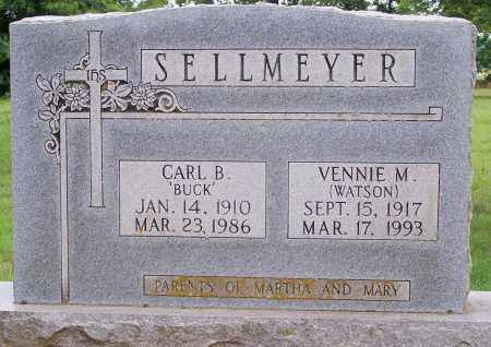 SELLMEYER, CARL B - Clay County, Arkansas   CARL B SELLMEYER - Arkansas Gravestone Photos