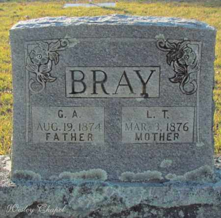 BRAY, L T (MOTHER) - Cleburne County, Arkansas | L T (MOTHER) BRAY - Arkansas Gravestone Photos