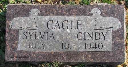 CAGLE, CINDY - Cleburne County, Arkansas | CINDY CAGLE - Arkansas Gravestone Photos