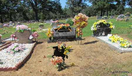 *CARLTON, OVERVIEW - Cleburne County, Arkansas | OVERVIEW *CARLTON - Arkansas Gravestone Photos