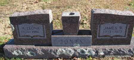 JONES, JAMES W - Cleburne County, Arkansas | JAMES W JONES - Arkansas Gravestone Photos