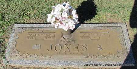 JONES, DAVID EUGENE - Cleburne County, Arkansas | DAVID EUGENE JONES - Arkansas Gravestone Photos