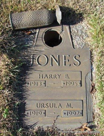 JONES, HARRY B - Cleburne County, Arkansas   HARRY B JONES - Arkansas Gravestone Photos