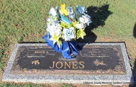 JONES, OPAL F - Cleburne County, Arkansas | OPAL F JONES - Arkansas Gravestone Photos