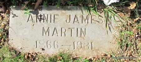 MARTIN, ANNIE - Cleburne County, Arkansas | ANNIE MARTIN - Arkansas Gravestone Photos
