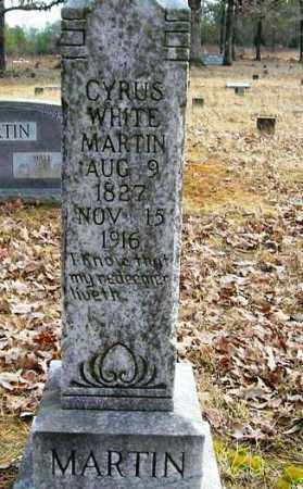 MARTIN, CYRUS WHITE - Cleburne County, Arkansas | CYRUS WHITE MARTIN - Arkansas Gravestone Photos