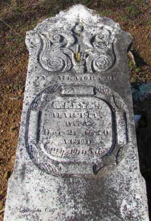 MARTIN, MARY J - Cleburne County, Arkansas | MARY J MARTIN - Arkansas Gravestone Photos
