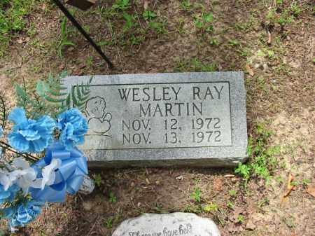 MARTIN, WESLEY RAY - Cleburne County, Arkansas   WESLEY RAY MARTIN - Arkansas Gravestone Photos