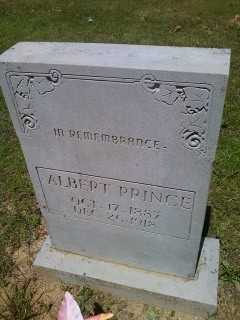 PRINCE, JAMES WILLIAM ALBERT - Cleburne County, Arkansas | JAMES WILLIAM ALBERT PRINCE - Arkansas Gravestone Photos