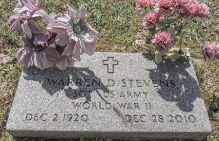 STEVENS (VETERAN WWII), WARREN D - Cleburne County, Arkansas | WARREN D STEVENS (VETERAN WWII) - Arkansas Gravestone Photos