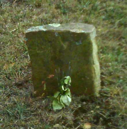 WARREN, B Y - Cleburne County, Arkansas   B Y WARREN - Arkansas Gravestone Photos