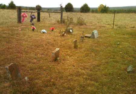 *WARREN CEMETERY OVERVIEW,  - Cleburne County, Arkansas |  *WARREN CEMETERY OVERVIEW - Arkansas Gravestone Photos