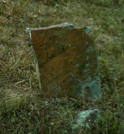 WARREN, T - Cleburne County, Arkansas   T WARREN - Arkansas Gravestone Photos