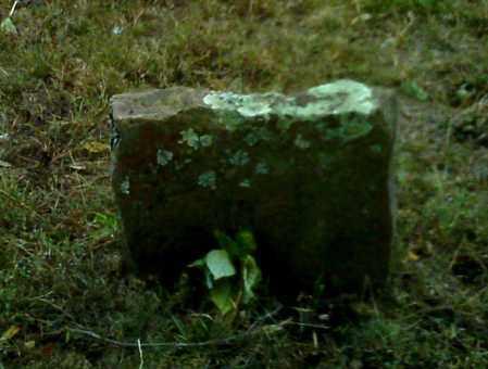 WARREN, W - Cleburne County, Arkansas | W WARREN - Arkansas Gravestone Photos