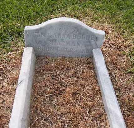 CHAPMAN, DAUGHTER - Broward County, Florida   DAUGHTER CHAPMAN - Florida Gravestone Photos