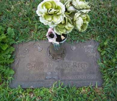REED, CHARITY MAE - Broward County, Florida | CHARITY MAE REED - Florida Gravestone Photos