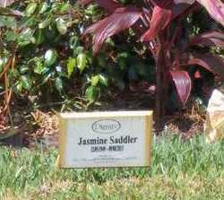 SADDLER, JASMINE - Broward County, Florida   JASMINE SADDLER - Florida Gravestone Photos