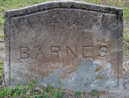 BARNES, THOMAS W. - Citrus County, Florida   THOMAS W. BARNES - Florida Gravestone Photos