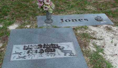 WADDINGTON JONES, FRANCIS WENONA - Citrus County, Florida   FRANCIS WENONA WADDINGTON JONES - Florida Gravestone Photos