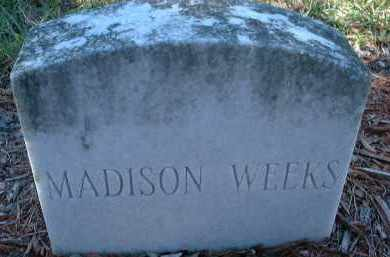 WEEKS, MADISON - Collier County, Florida | MADISON WEEKS - Florida Gravestone Photos