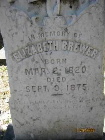 BREWER, ELIZABETH - DeSoto County, Florida | ELIZABETH BREWER - Florida Gravestone Photos