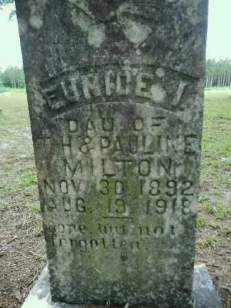 MILTON, EUNICE IRENE - Gilchrist County, Florida | EUNICE IRENE MILTON - Florida Gravestone Photos
