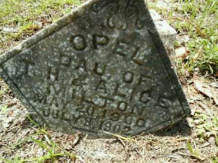 MILTON, OPEL - Gilchrist County, Florida | OPEL MILTON - Florida Gravestone Photos