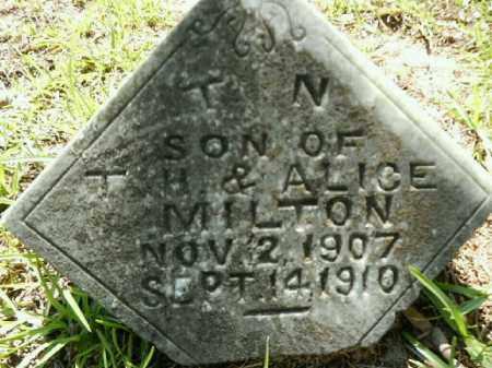 MILTON, T. N. - Gilchrist County, Florida | T. N. MILTON - Florida Gravestone Photos