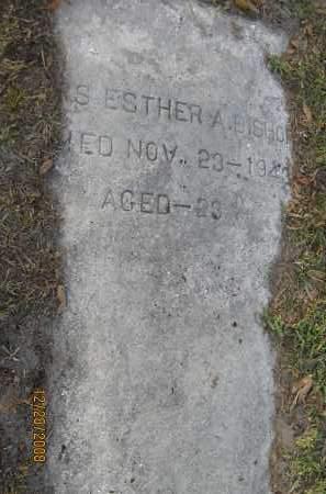 BISHOP, ESTHER A - Hillsborough County, Florida   ESTHER A BISHOP - Florida Gravestone Photos
