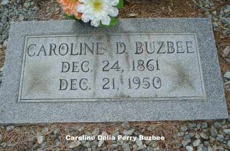 PERRY BUZBEE, CAROLINE DELIA - Hillsborough County, Florida | CAROLINE DELIA PERRY BUZBEE - Florida Gravestone Photos