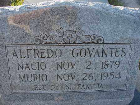 GOVANTES, ALFREDO - Hillsborough County, Florida | ALFREDO GOVANTES - Florida Gravestone Photos