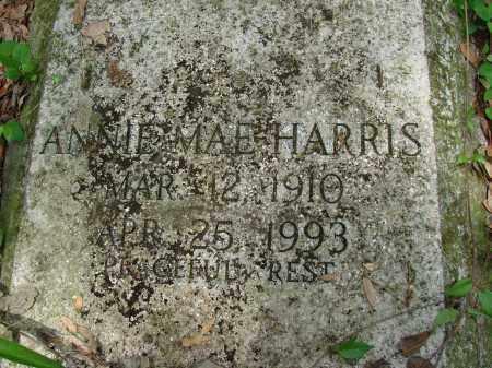 HARRIS, ANNIE MAE - Hillsborough County, Florida   ANNIE MAE HARRIS - Florida Gravestone Photos