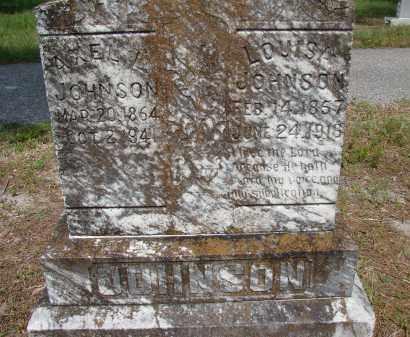 JOHNSON, LOUISA - Hillsborough County, Florida | LOUISA JOHNSON - Florida Gravestone Photos