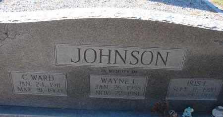 JOHNSON, IRIS I. - Hillsborough County, Florida | IRIS I. JOHNSON - Florida Gravestone Photos