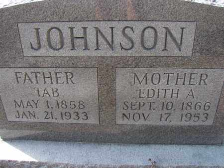 JOHNSON, TAB - Hillsborough County, Florida   TAB JOHNSON - Florida Gravestone Photos