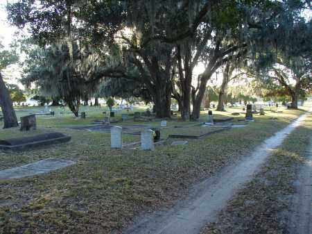 *MEMORIAL PARK, OVERVIEW #2 - Hillsborough County, Florida | OVERVIEW #2 *MEMORIAL PARK - Florida Gravestone Photos