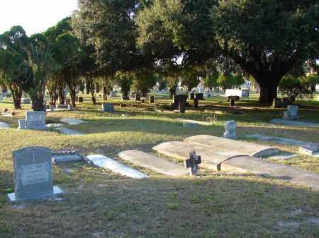 *MEMORIAL PARK, OVERVIEW #3 - Hillsborough County, Florida | OVERVIEW #3 *MEMORIAL PARK - Florida Gravestone Photos