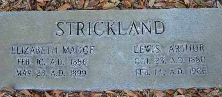 STRICKLAND, LEWIS ARTHUR - Hillsborough County, Florida | LEWIS ARTHUR STRICKLAND - Florida Gravestone Photos